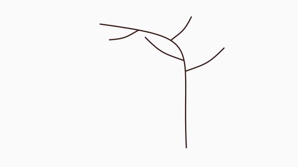Frühjahrspflege für Brombeeren – Wachsender frischer Trieb mit Seitentrieben