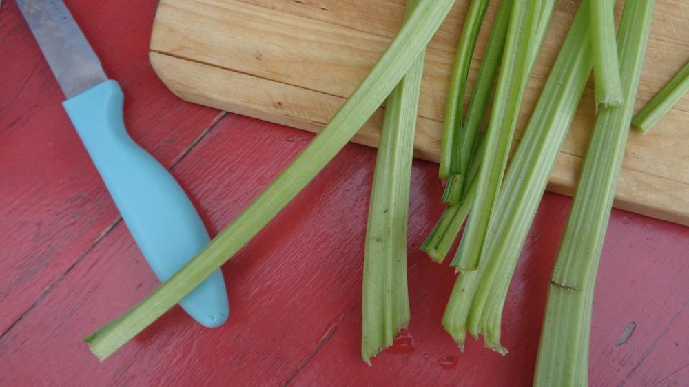 Gemüsetarte aus dem Garten – Mangoldstiele