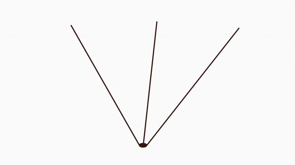 Jostabeere ans Spalier pflanzen – 3 Triebe