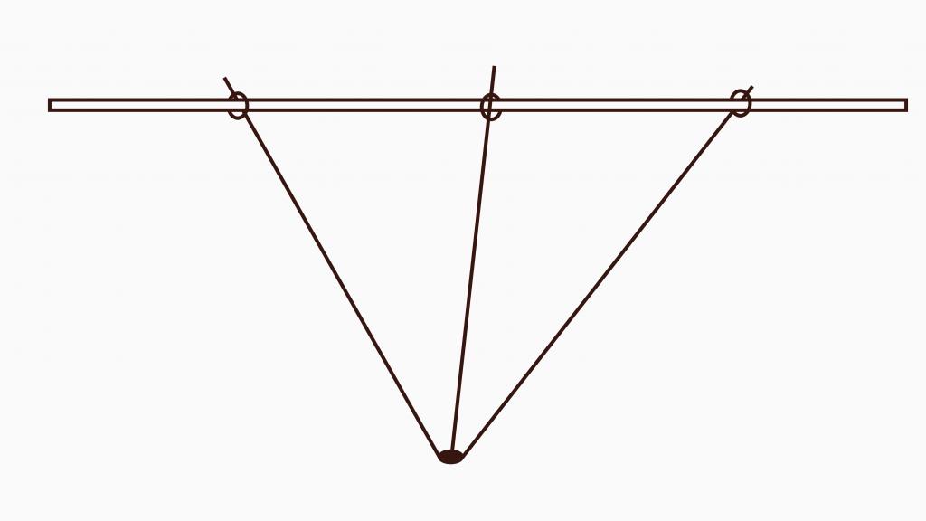 Jostabeere ans Spalier pflanzen – 3 angebundene Triebe