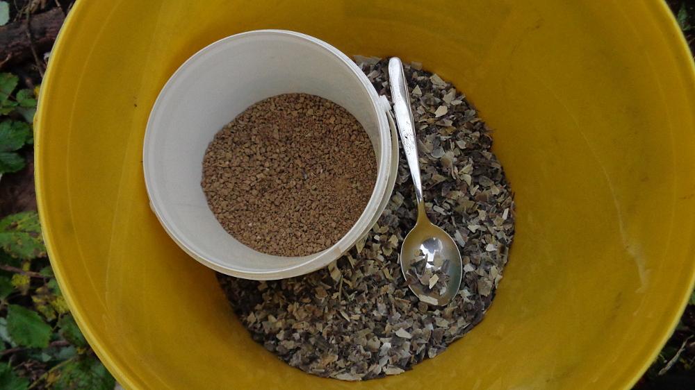 Jostabeere ans Spalier pflanzen – Beerendünger und Hornspäne