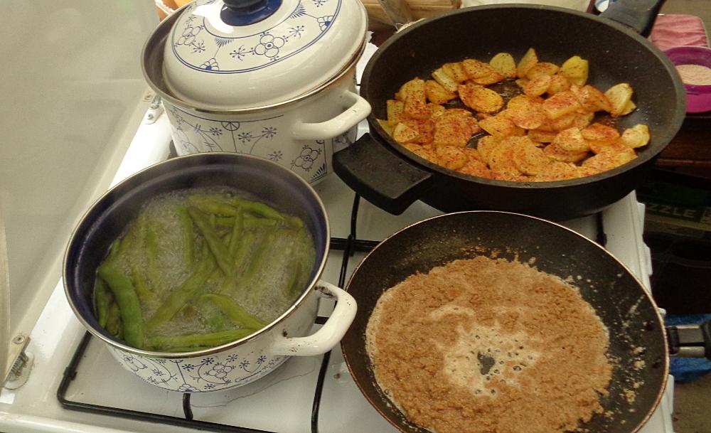 Stangenbohnen ernten – Bohnen kochen