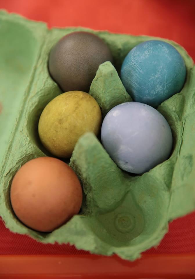 Fertige Eier