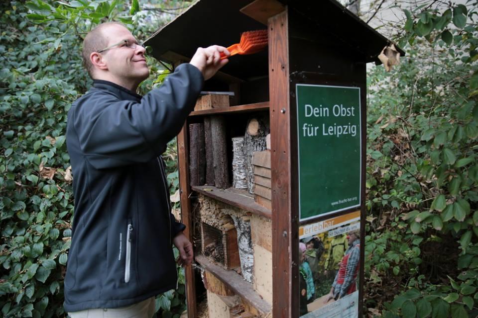 Insektenhotel putzen