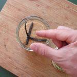 Selber-Machen ist kein Geheimnis – Grundrezept für Vanillezucker